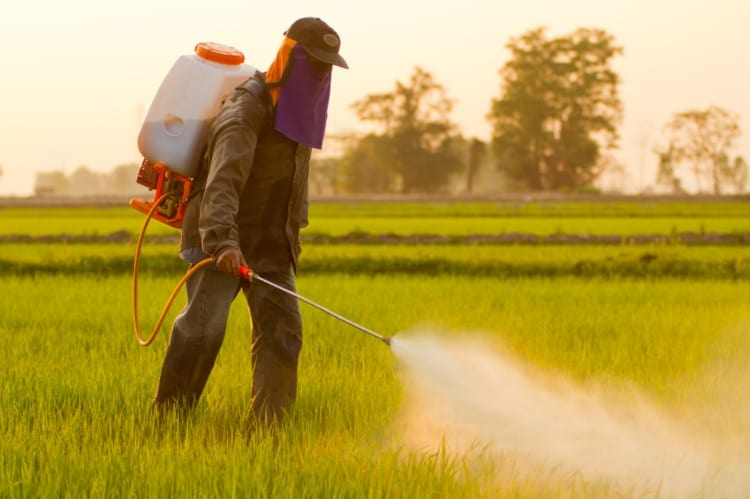 More Communities, Public Agencies Fighting Pesticide Use