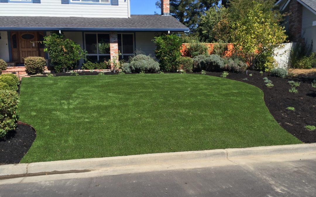What Makes NewGrass an Ideal Xeriscaping Addition?