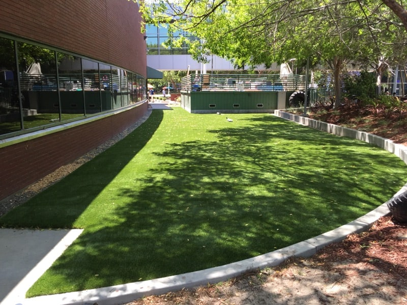 Rebates, Incentives for Synthetic Grass Continue